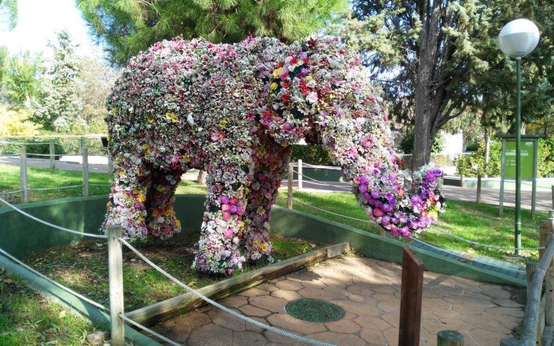 Primaria: Visita al Zoo de Madrid 2018