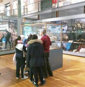 Visita al Museo de Ciencias Naturales 2019.