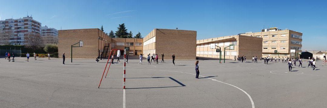 Primaria: Educación Física.