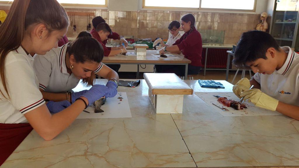 Laboratorio 18