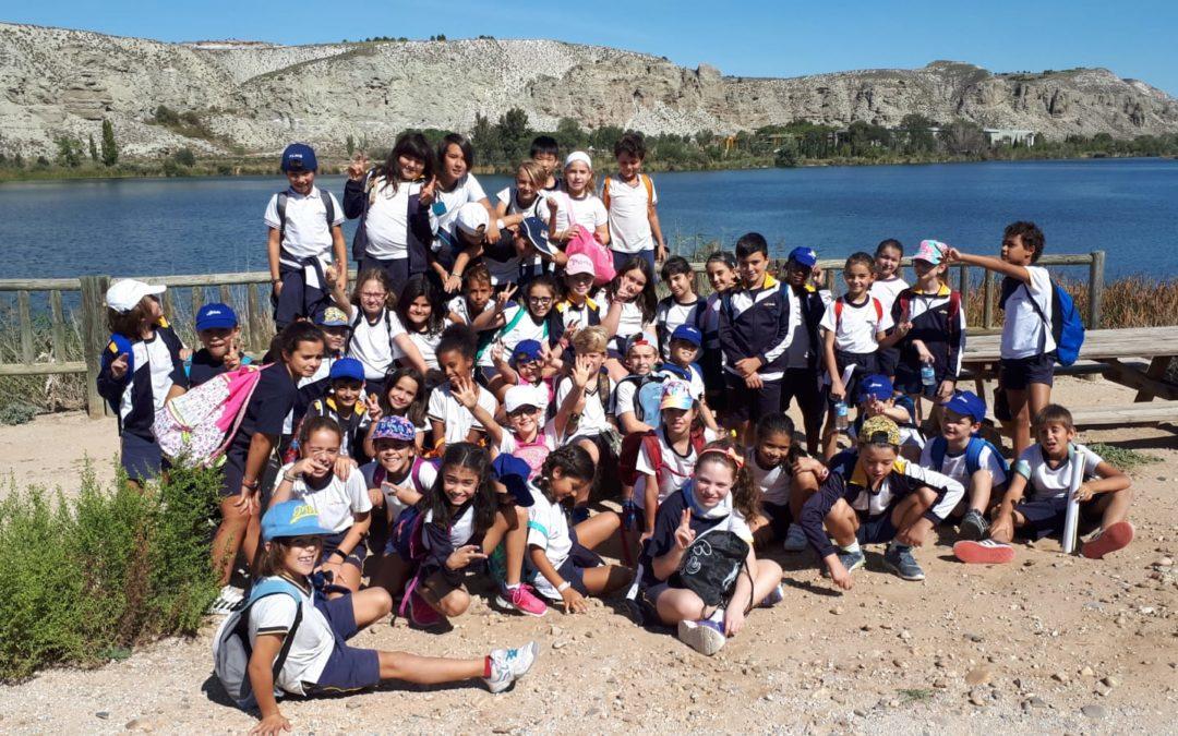 Primaria: Aula de la Naturaleza El Campillo 2019