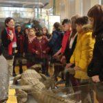 6ºEP Visita Museo de CIencias Naturales 2019
