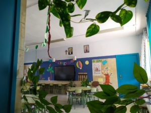 La selva en el aula NCA