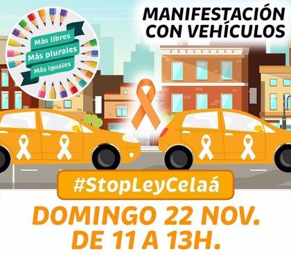 Manifestación  #StopLeyCelaa