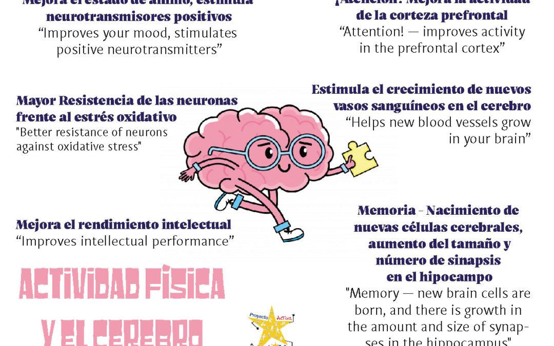 Actividad Física y Cerebro